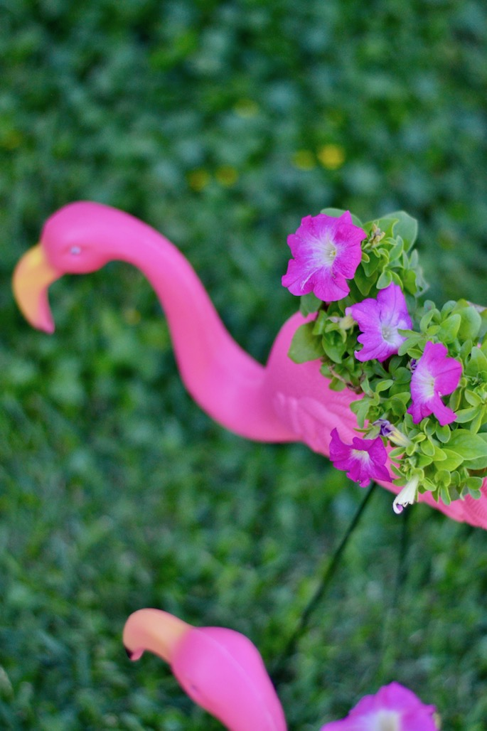 Diy Yard Flamingo Flower Planters Southern Flair